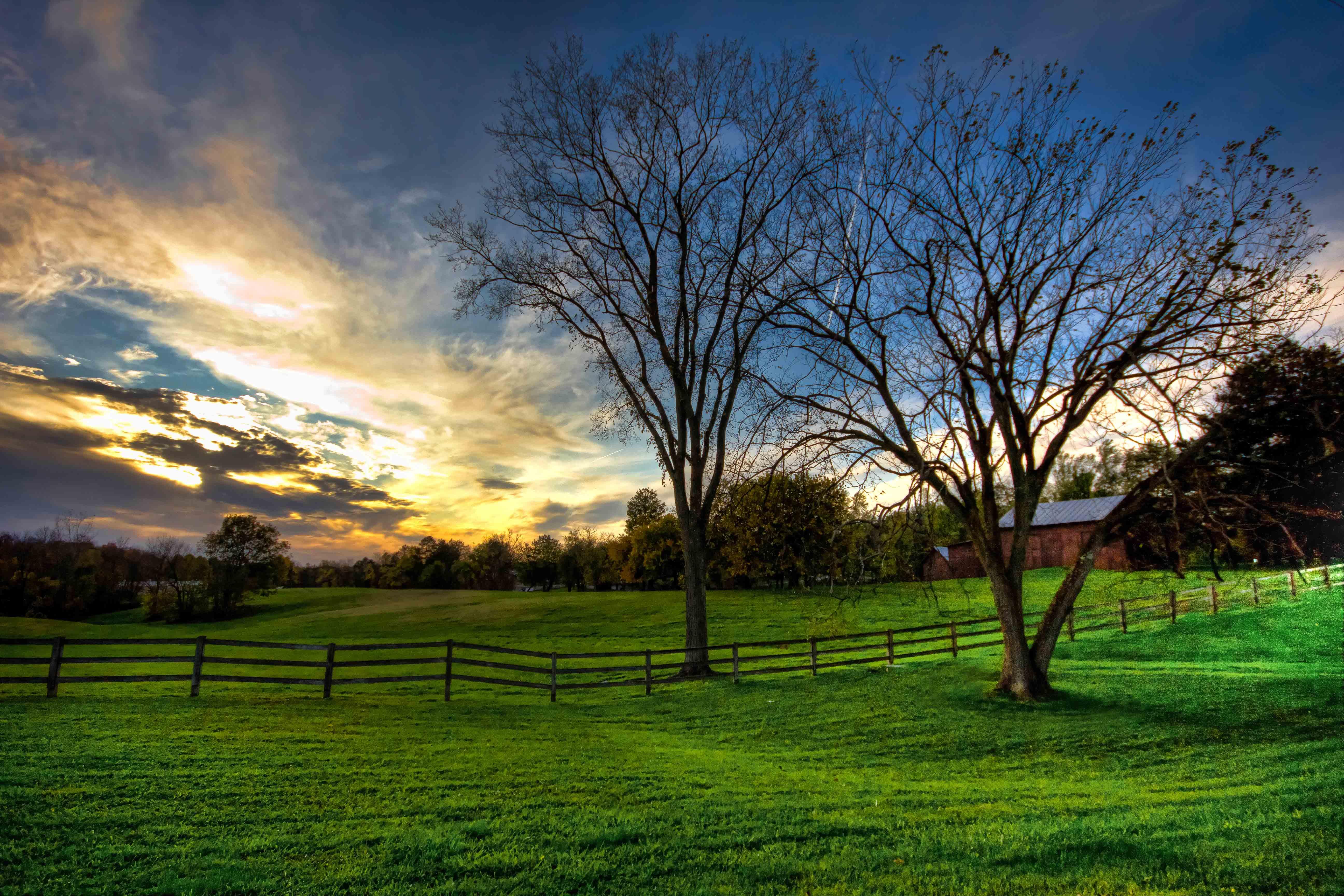 Medina County Farm